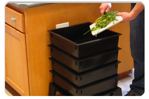 Food Scraps to Your Worm Bins